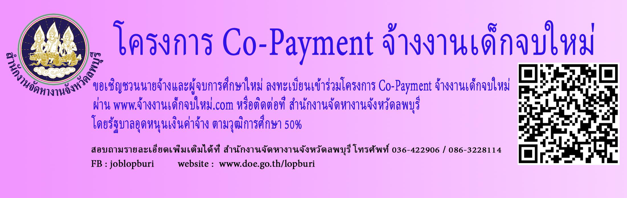 โครงการส่งเสริมการจ้างงานใหม่สำหรับผู้จบการศึกษาใหม่โดยภาครัฐและภาคเอกชน (Co-payment)